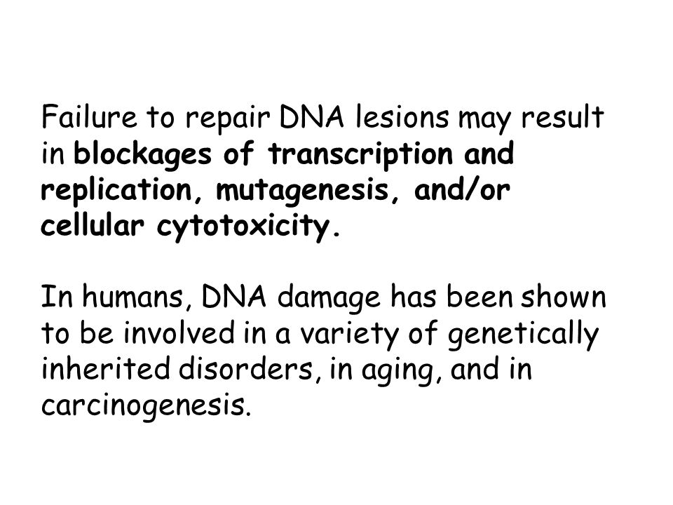 So thank goodness for DNA Repair