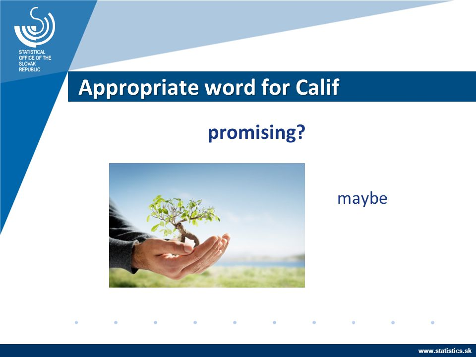 www.statistics.sk Appropriate word for Calif promising? maybe