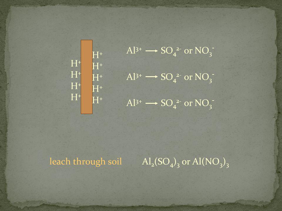 H+H+H+H+H+H+H+H+H+H+ Al 3+ H+H+H+H+H+H+H+H+ SO 4 2- or NO 3 - Al 2 (SO 4 ) 3 or Al(NO 3 ) 3 leach through soil