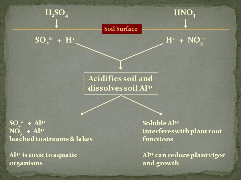 Soil Surface H 2 SO 4 HNO 3 SO 4 2- + H + H + + NO 3 - Acidifies soil and dissolves soil Al 3+ SO 4 2- + Al 3+ NO 3 - + Al 3+ leached to streams & lak