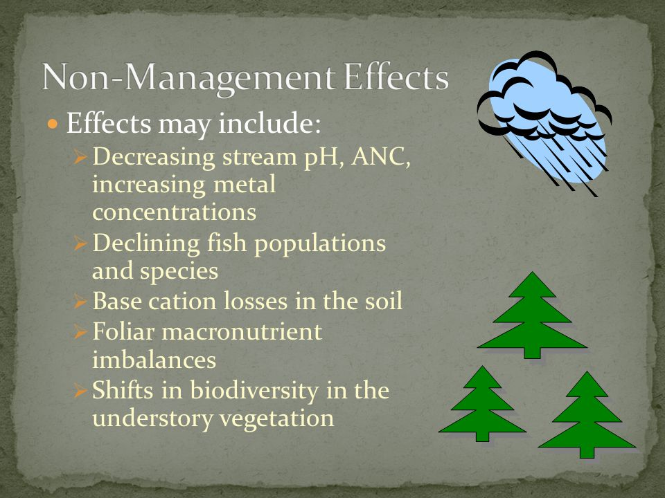 Effects may include:  Decreasing stream pH, ANC, increasing metal concentrations  Declining fish populations and species  Base cation losses in the soil  Foliar macronutrient imbalances  Shifts in biodiversity in the understory vegetation