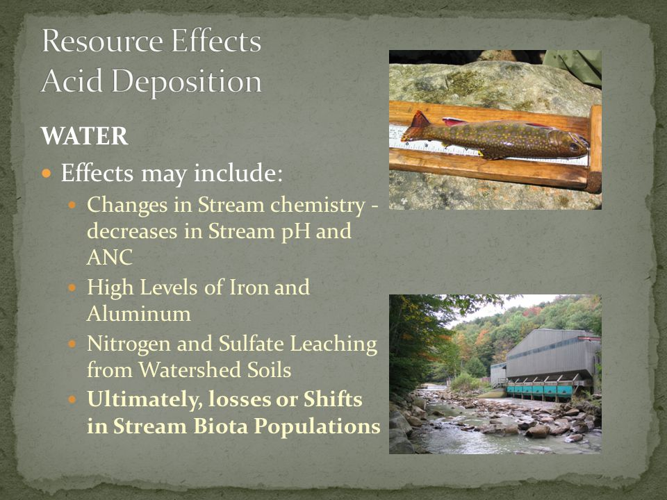 WATER Effects may include: Changes in Stream chemistry - decreases in Stream pH and ANC High Levels of Iron and Aluminum Nitrogen and Sulfate Leaching from Watershed Soils Ultimately, losses or Shifts in Stream Biota Populations