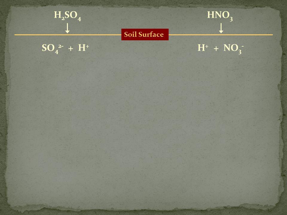 Soil Surface H 2 SO 4 HNO 3 SO 4 2- + H + H + + NO 3 -