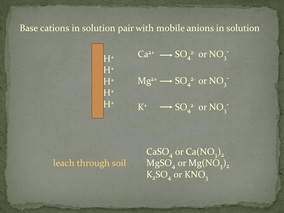 H+H+H+H+H+H+H+H+H+H+ Ca 2+ Mg 2+ K + SO 4 2- or NO 3 - Base cations in solution pair with mobile anions in solution CaSO 4 or Ca(NO 3 ) 2 MgSO 4 or Mg(NO 3 ) 2 K 2 SO 4 or KNO 3 leach through soil