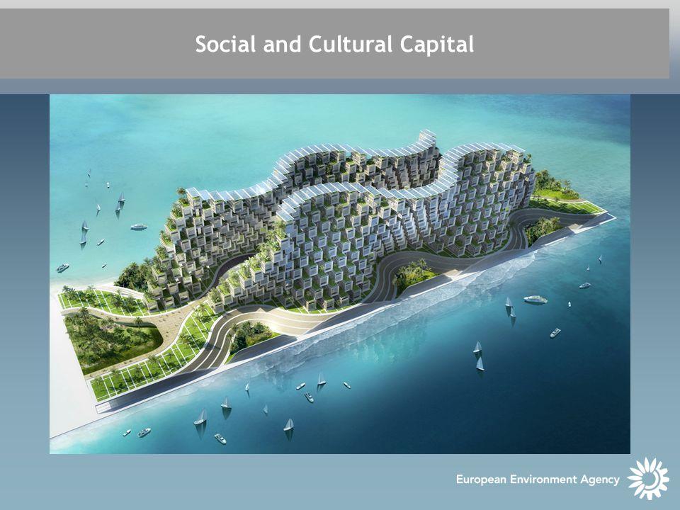 Social and Cultural Capital
