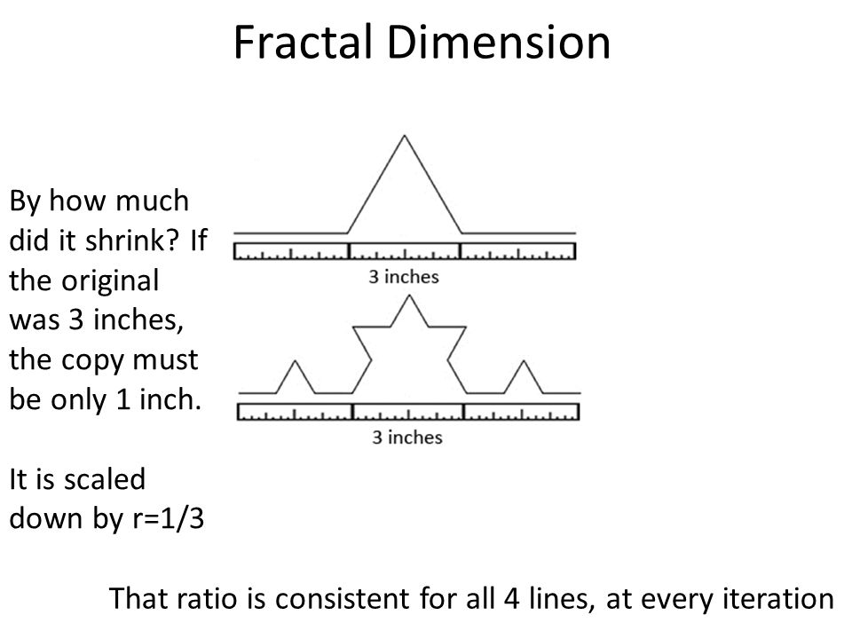 Fractal Dimension By how much did it shrink.