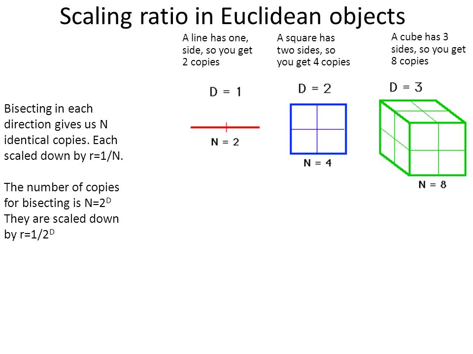 Scaling ratio in Euclidean objects Bisecting in each direction gives us N identical copies.