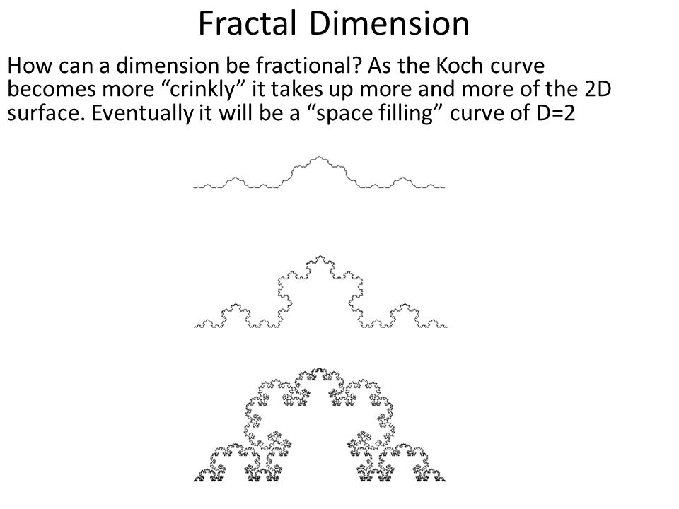 Fractal Dimension How can a dimension be fractional.