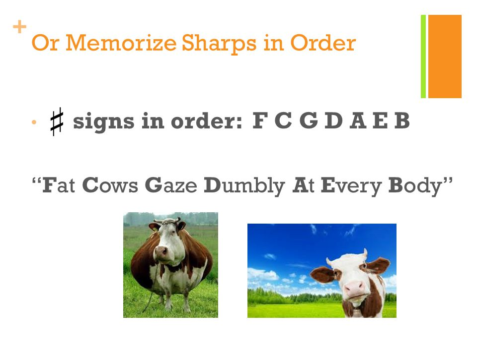 + Or Memorize Sharps in Order signs in order: F C G D A E B Fat Cows Gaze Dumbly At Every Body