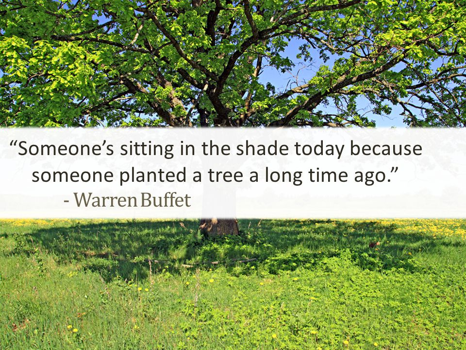 - Warren Buffet Someone's sitting in the shade today because someone planted a tree a long time ago.