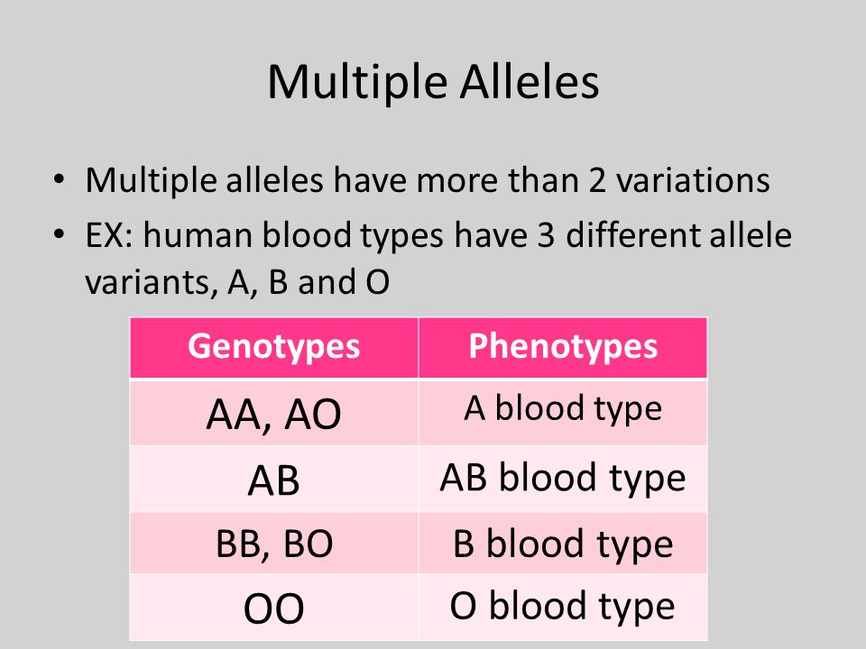 Multiple Alleles Multiple alleles have more than 2 variations EX: human blood types have 3 different allele variants, A, B and O GenotypesPhenotypes AA, AO A blood type AB AB blood type BB, BOB blood type OO O blood type