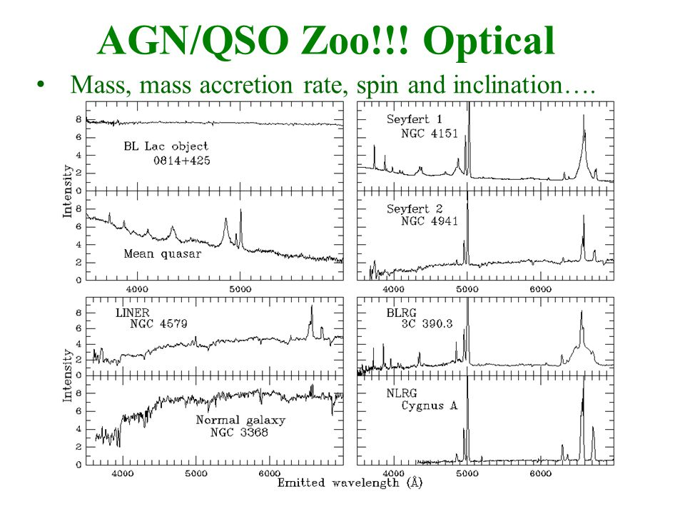 AGN/QSO Zoo!!! Optical Mass, mass accretion rate, spin and inclination….