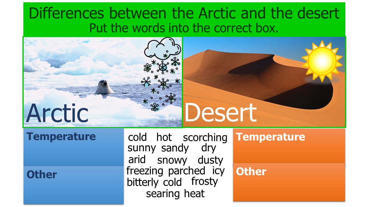 Differences between the Arctic and the desert Put the words into the correct box. Arctic Desert Temperature Other Temperature Other cold hot snowy sun