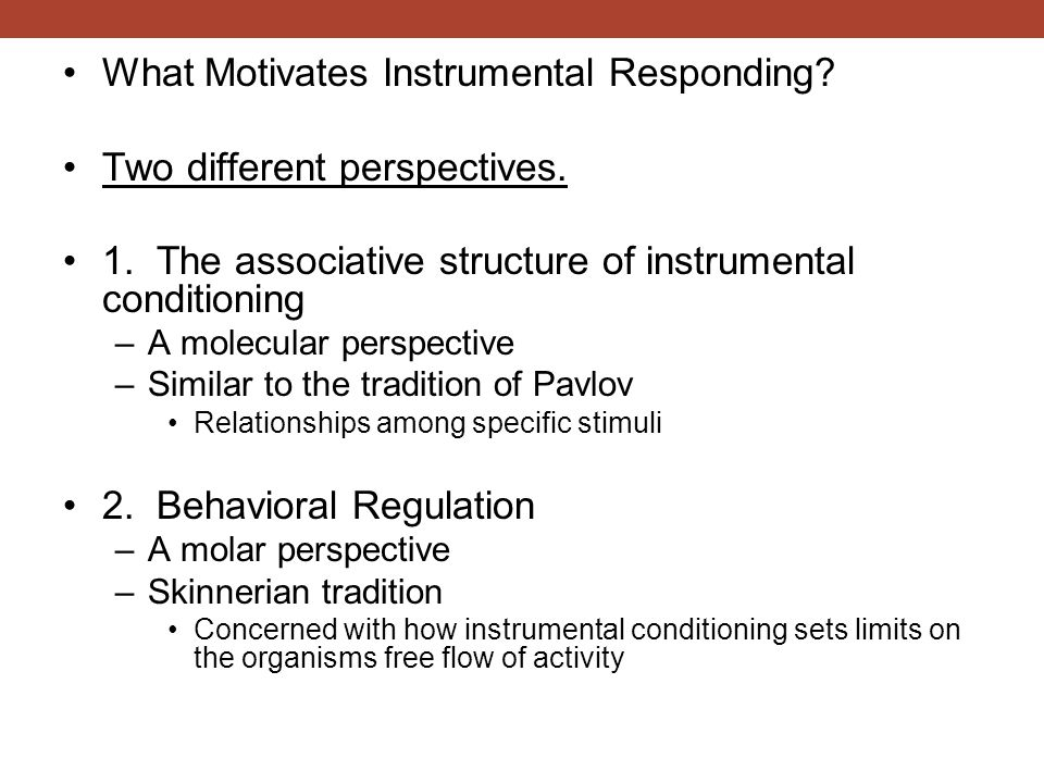 What Motivates Instrumental Responding? Two different perspectives. 1. The associative structure of instrumental conditioning –A molecular perspective