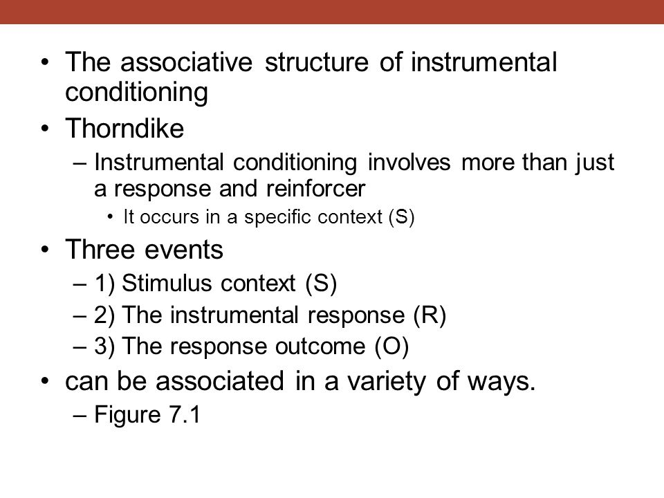 The associative structure of instrumental conditioning Thorndike –Instrumental conditioning involves more than just a response and reinforcer It occur