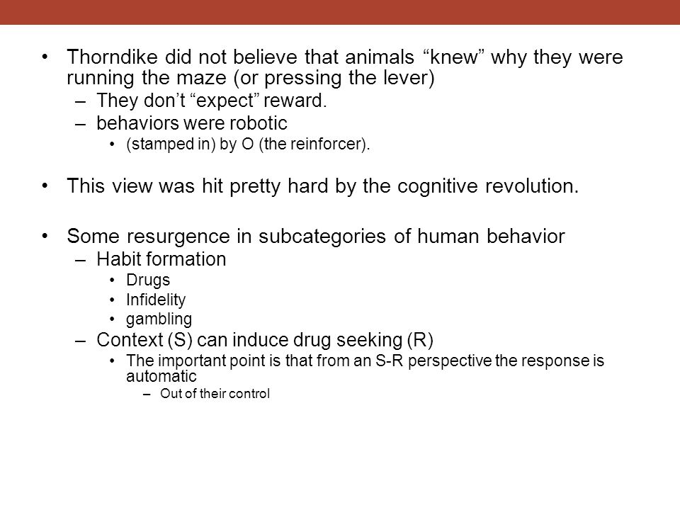 """Thorndike did not believe that animals """"knew"""" why they were running the maze (or pressing the lever) –They don't """"expect"""" reward. –behaviors were robo"""