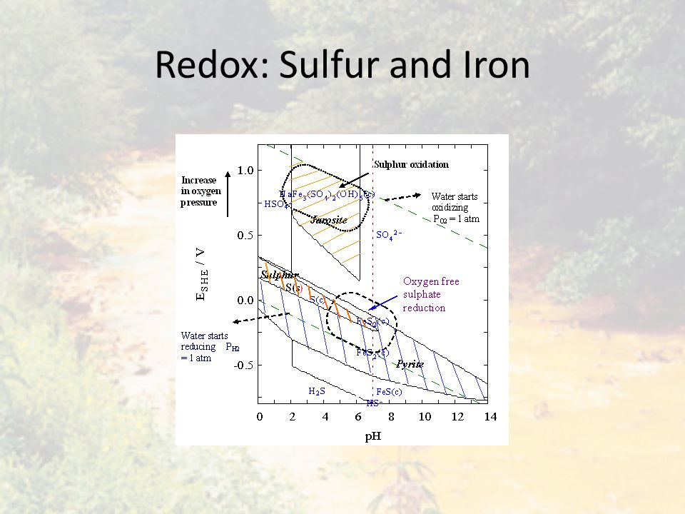 Redox: Sulfur and Iron