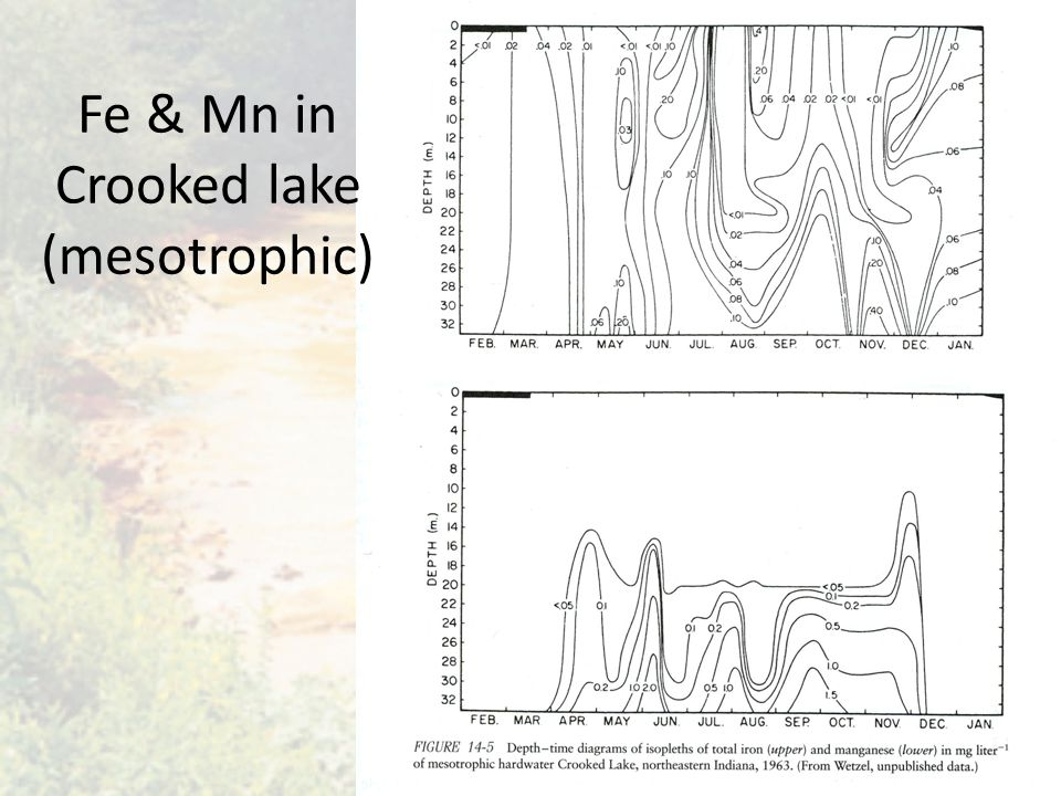 Fe & Mn in Crooked lake (mesotrophic)