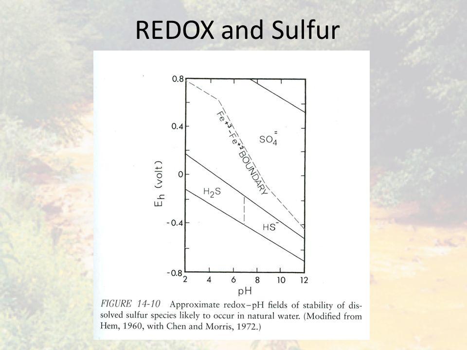 REDOX and Sulfur