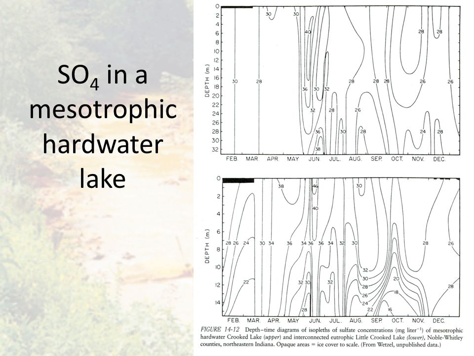 SO 4 in a mesotrophic hardwater lake