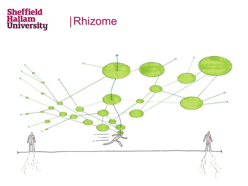 Rhizome Quotes from data x 3 and more explanation of concept