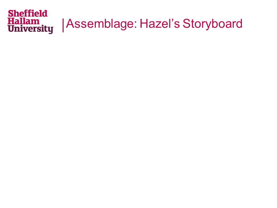 Assemblage: Hazel's Storyboard