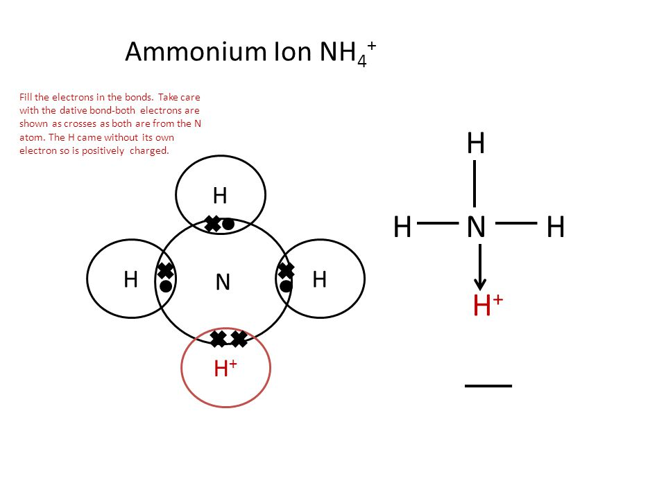 Ammonium Ion NH 4 + N H H+H+ HH HN H+H+ H H Fill the electrons in the bonds. Take care with the dative bond-both electrons are shown as crosses as bot