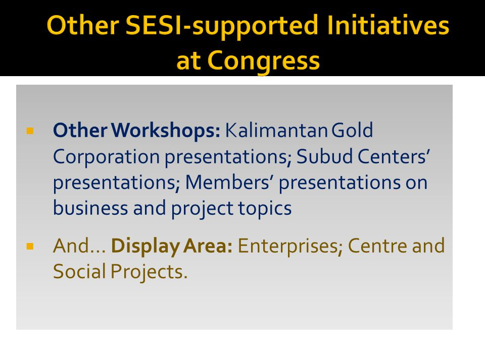  Other Workshops: Kalimantan Gold Corporation presentations; Subud Centers' presentations; Members' presentations on business and project topics  And… Display Area: Enterprises; Centre and Social Projects.