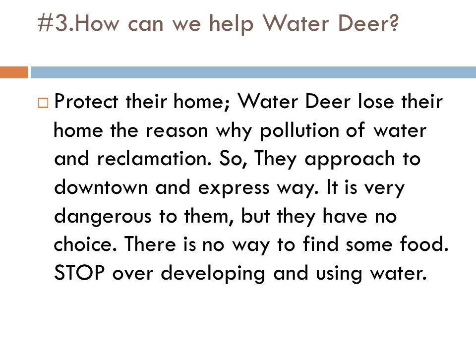#3.How can we help Water Deer.