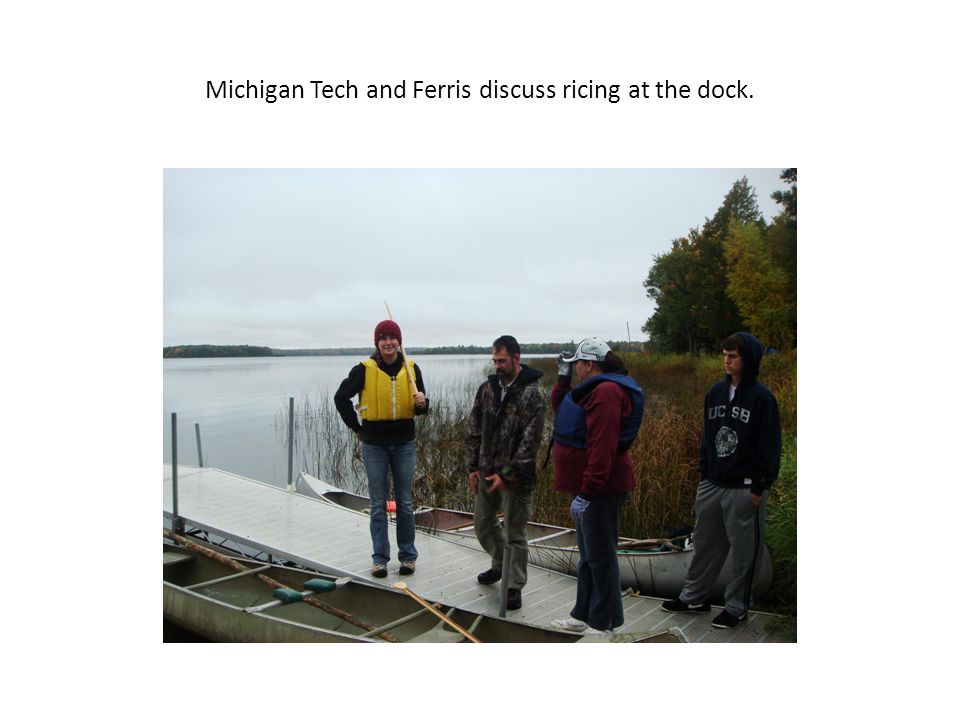 Michigan Tech and Ferris discuss ricing at the dock.