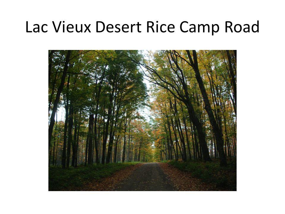 Lac Vieux Desert Rice Camp Road