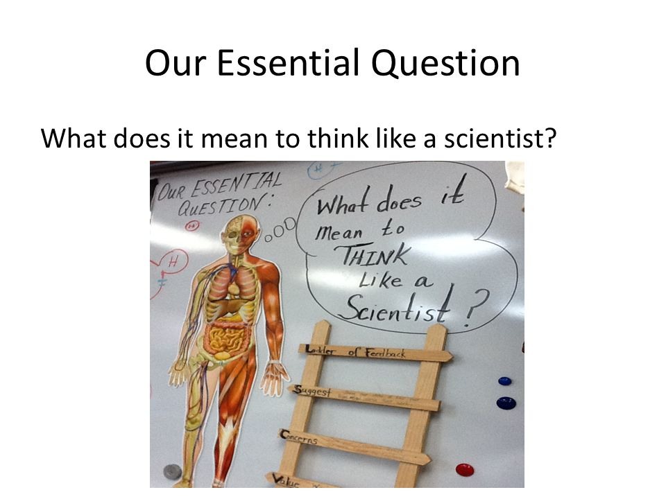 Our Essential Question What does it mean to think like a scientist?