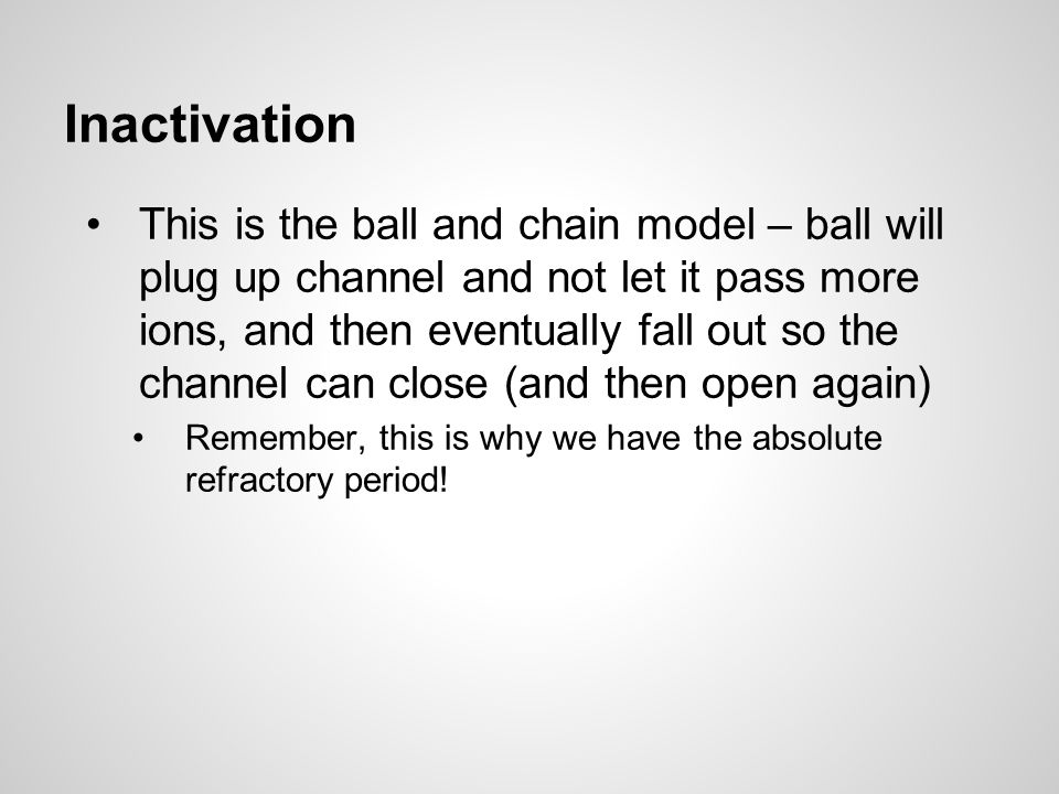Inactivation This is the ball and chain model – ball will plug up channel and not let it pass more ions, and then eventually fall out so the channel can close (and then open again) Remember, this is why we have the absolute refractory period!