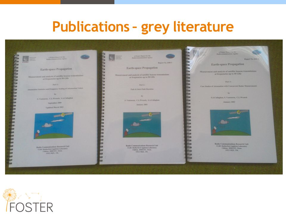 Publications – grey literature