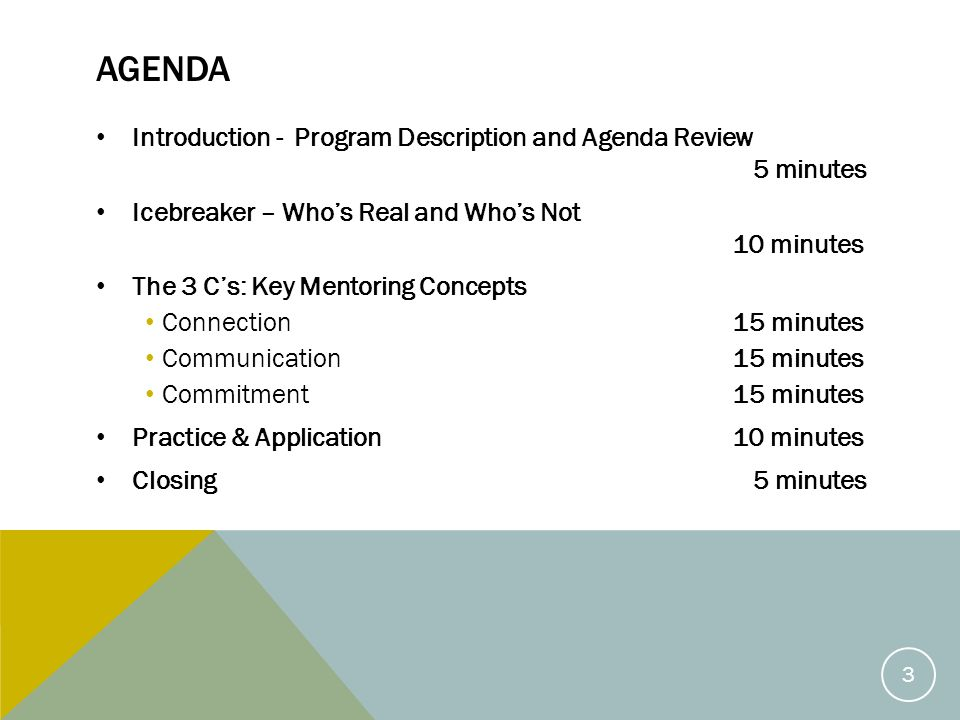 AGENDA Introduction - Program Description and Agenda Review 5 minutes Icebreaker – Who's Real and Who's Not 10 minutes The 3 C's: Key Mentoring Concepts Connection 15 minutes Communication 15 minutes Commitment 15 minutes Practice & Application 10 minutes Closing 5 minutes 3