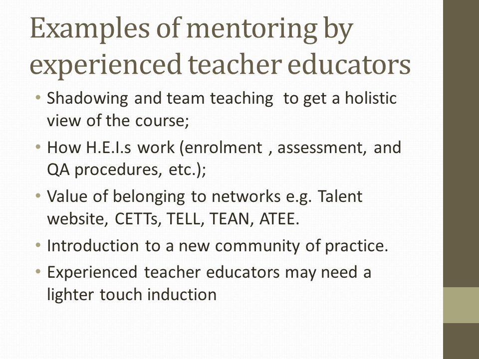 Examples of mentoring by experienced teacher educators Shadowing and team teaching to get a holistic view of the course; How H.E.I.s work (enrolment,