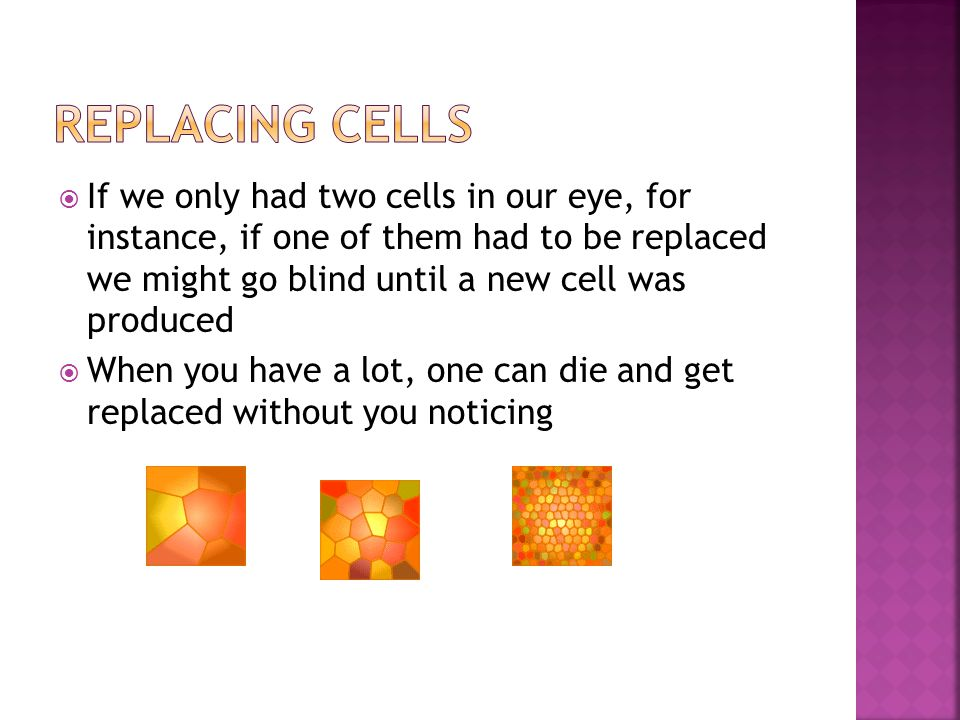  If we only had two cells in our eye, for instance, if one of them had to be replaced we might go blind until a new cell was produced  When you have a lot, one can die and get replaced without you noticing
