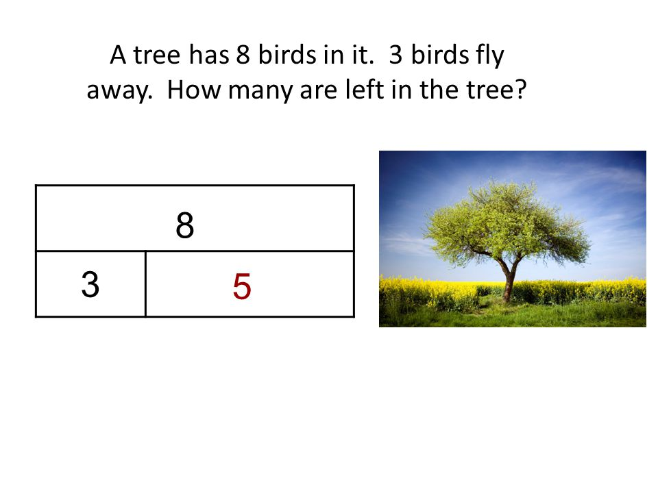 A tree has 8 birds in it. 3 birds fly away. How many are left in the tree 8 3 5