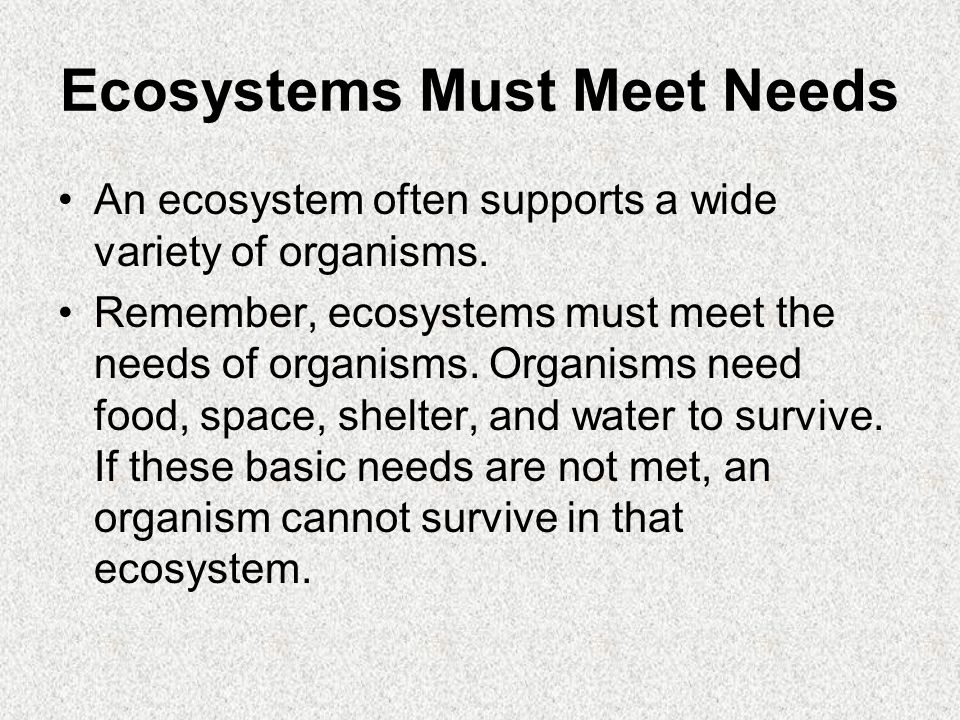 Ecosystems Must Meet Needs An ecosystem often supports a wide variety of organisms.