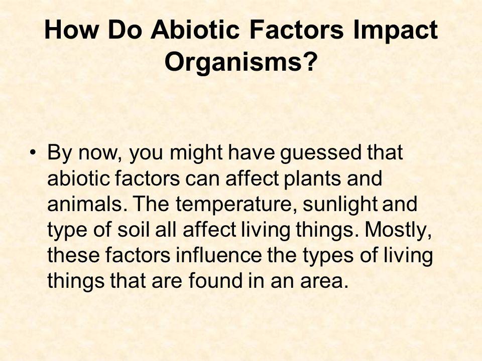 How Do Abiotic Factors Impact Organisms.