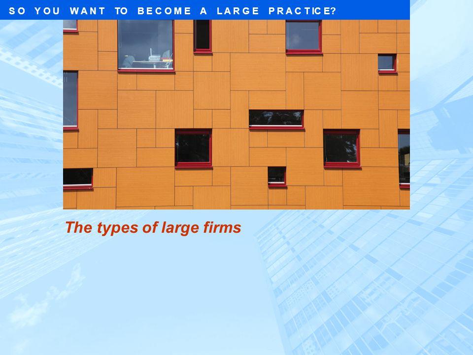 The types of large firms S O Y O U W A N T TO B E C O M E A L A R G E P R A C T IC E?