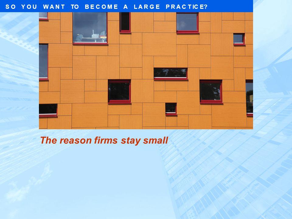 The reason firms stay small S O Y O U W A N T TO B E C O M E A L A R G E P R A C T IC E?