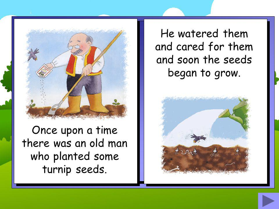 The End Story retold by Bev Evans www.communication4all.co.uk www.communication4all.co.uk Images by Jan Lewis ©Ladybird books