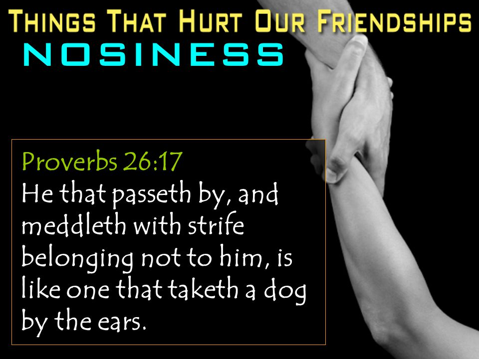 Proverbs 26:17 He that passeth by, and meddleth with strife belonging not to him, is like one that taketh a dog by the ears.
