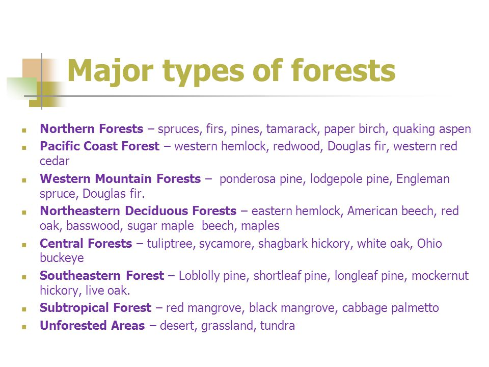 Major types of forests Northern Forests – spruces, firs, pines, tamarack, paper birch, quaking aspen Pacific Coast Forest – western hemlock, redwood, Douglas fir, western red cedar Western Mountain Forests – ponderosa pine, lodgepole pine, Engleman spruce, Douglas fir.