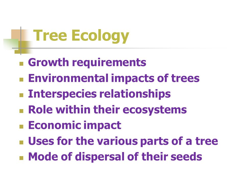 Tree Ecology Growth requirements Environmental impacts of trees Interspecies relationships Role within their ecosystems Economic impact Uses for the various parts of a tree Mode of dispersal of their seeds