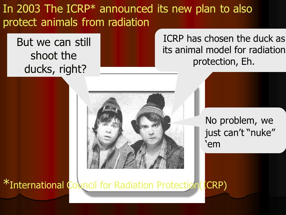 ICRP has chosen the duck as its animal model for radiation protection, Eh.