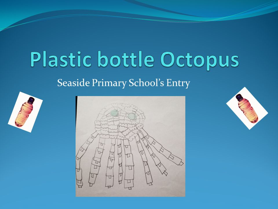 Seaside Primary School's Entry