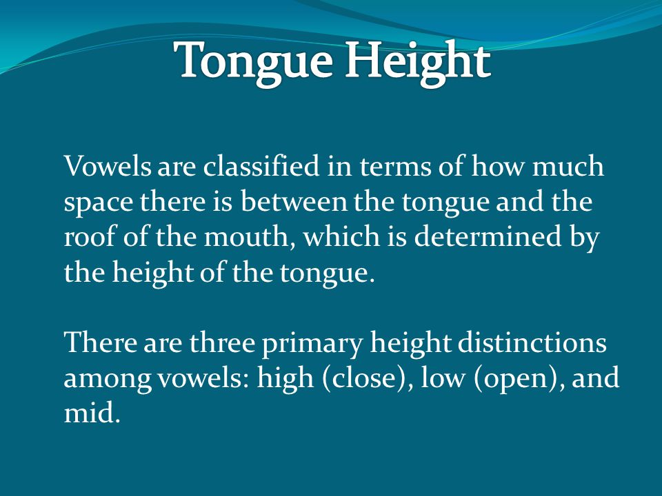 Vowels are classified in terms of how much space there is between the tongue and the roof of the mouth, which is determined by the height of the tongue.