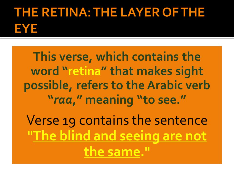 "This verse, which contains the word ""retina"" that makes sight possible, refers to the Arabic verb ""raa,"" meaning ""to see."" Verse 19 contains the sente"
